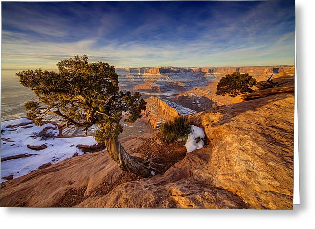 Life On The Edge Greeting Card by Peter Irwindale