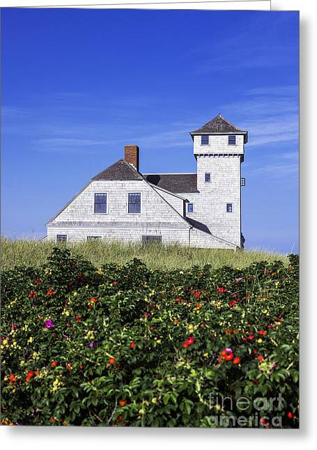 Beach Roses Greeting Cards - Life Saving Museum Greeting Card by John Greim
