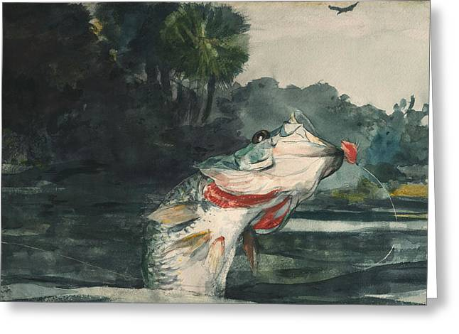 Black Bass Greeting Cards - Life Size Black Bass Greeting Card by Winslow Homer