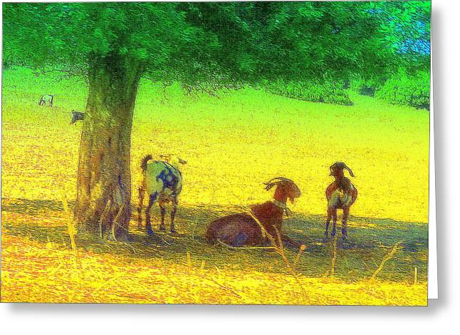 Farmlife Greeting Cards - Life Under The Tree Greeting Card by Hilde Widerberg