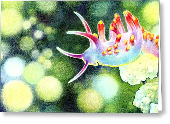 Diving Drawings Greeting Cards - Life Under Water Greeting Card by Natasha Denger