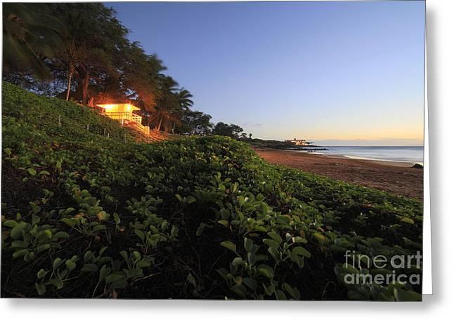 Shack Greeting Cards - Lifeguard Shack Kamaole III Beach South Maui Kihei Hawaii Greeting Card by Edward Fielding