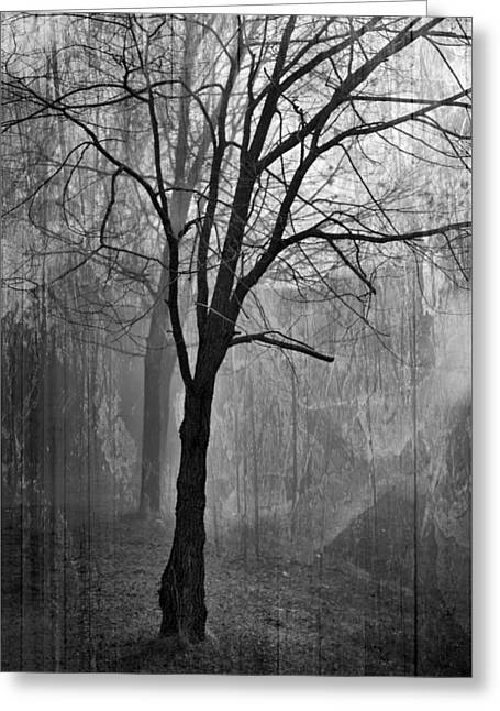 Lifeless Greeting Cards - Lifeless Fog Greeting Card by Melissa Smith