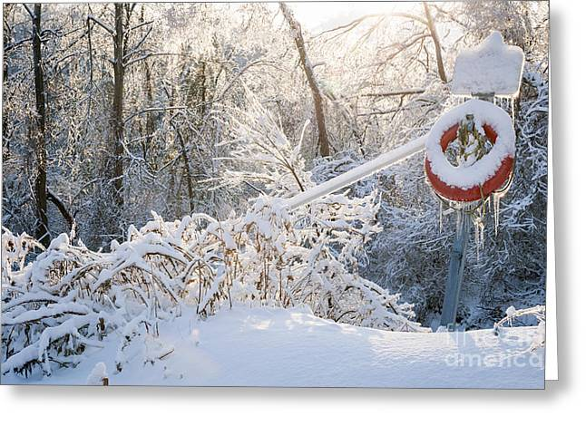 Snowstorm Greeting Cards - Lifesaver in winter snow Greeting Card by Elena Elisseeva