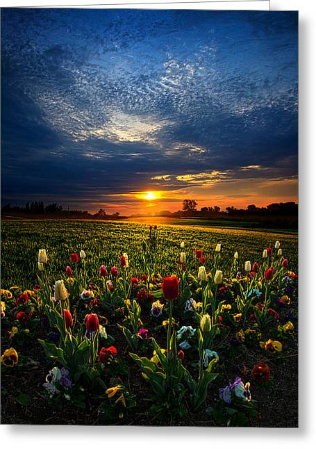 Geographic Greeting Cards - Lifetimes Greeting Card by Phil Koch