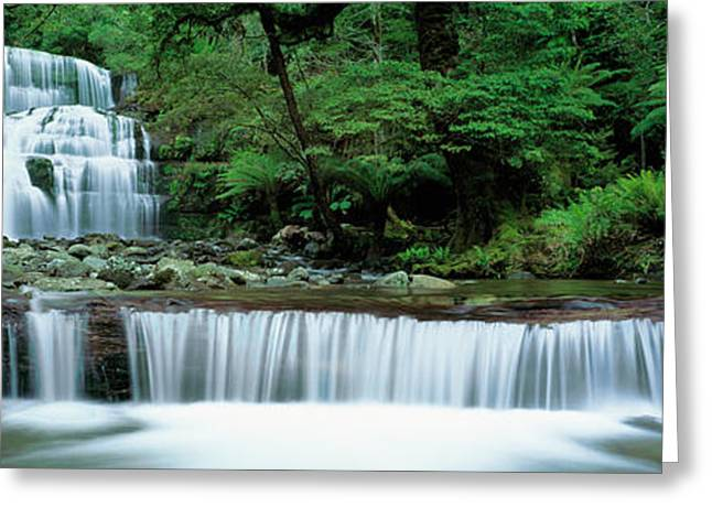 Liffey Falls, Tasmania, Australia Greeting Card by Panoramic Images