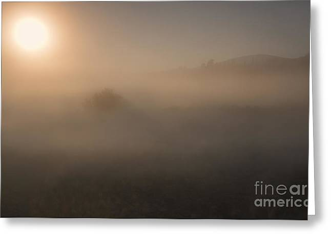 Veiled Photographs Greeting Cards - Lifting the Veil Greeting Card by Mike  Dawson