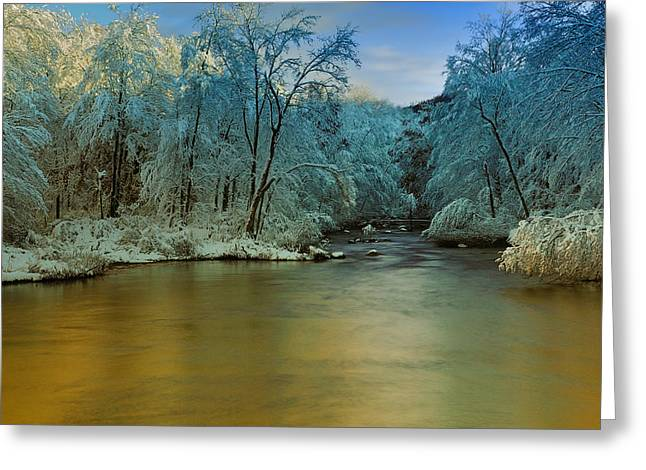 Snow Scene Landscape Greeting Cards - Light After the Storm Greeting Card by Thomas Schoeller