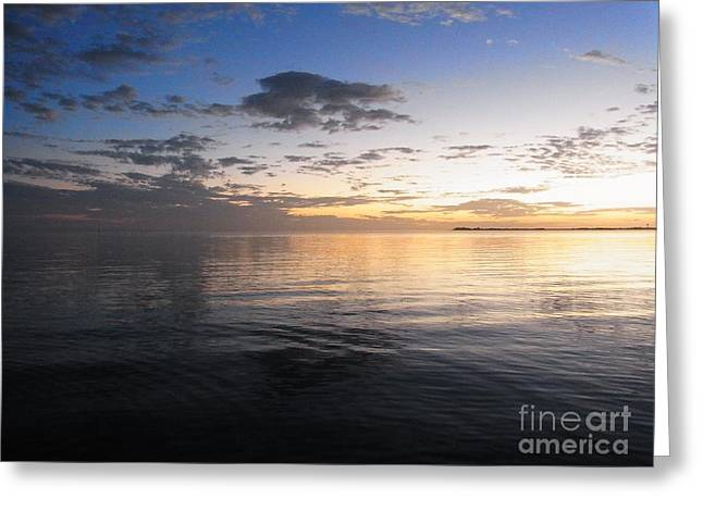 St Petersburg Florida Greeting Cards - Light And Darkness - Equilibrium Greeting Card by Agnieszka Ledwon