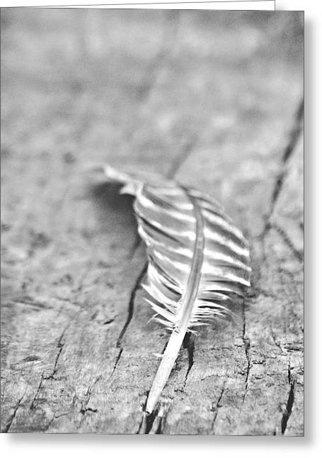A Summer Evening Greeting Cards - Light as a Feather Greeting Card by Chastity Hoff