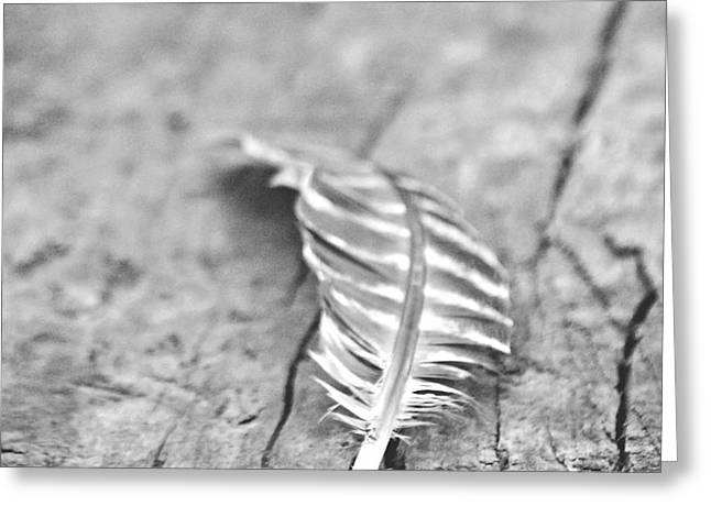 Light as a Feather Greeting Card by Chastity Hoff