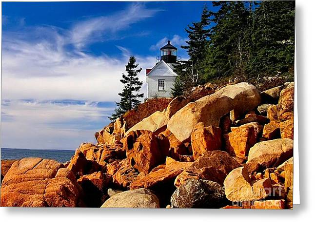 Bass Head Lighthouse Greeting Cards - Light at Bass Harbor Greeting Card by Nick Zelinsky