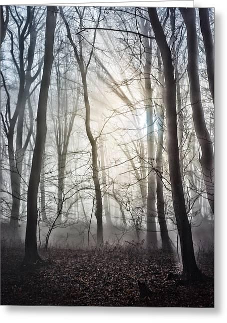 Deep Fears Greeting Cards - Light Greeting Card by Dobromir Dobrinov