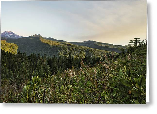 Light Falling On South Sister Greeting Card by Belinda Greb