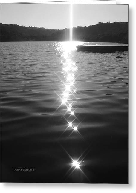 Lafayette Reservoir Greeting Cards - Light From Above Greeting Card by Donna Blackhall