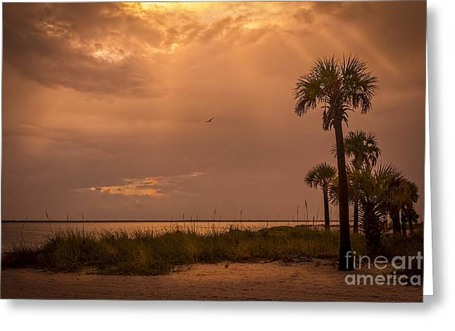 California Beach Greeting Cards - Light from Above Greeting Card by Marvin Spates