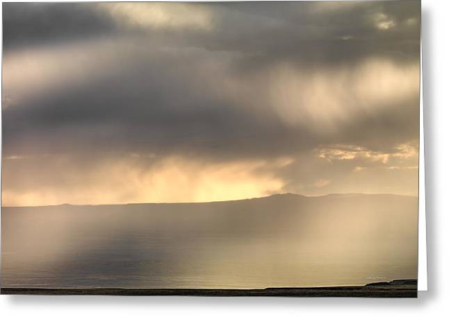 Light In Rain Greeting Card by Leland D Howard