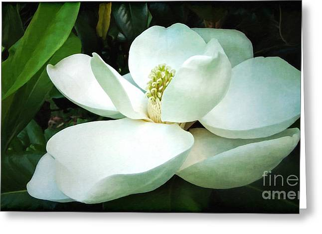 White Digital Greeting Cards - Light in the Darkness Greeting Card by Lianne Schneider