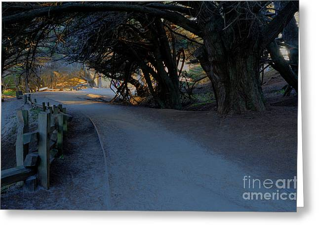 Pfeiffer Beach Greeting Cards - Light in the End of the Tunnel Greeting Card by Diana Vitoshka