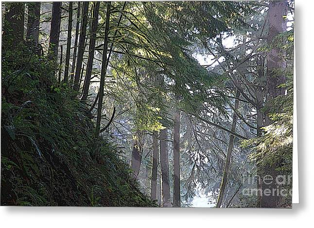 Dappled Light Greeting Cards - Light in the Forest 2 Greeting Card by Jeanette French