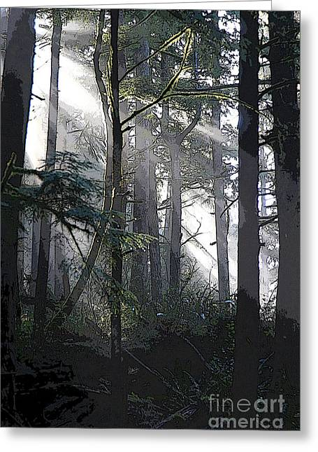 Dappled Light Greeting Cards - Light in the Forest 3 Greeting Card by Jeanette French