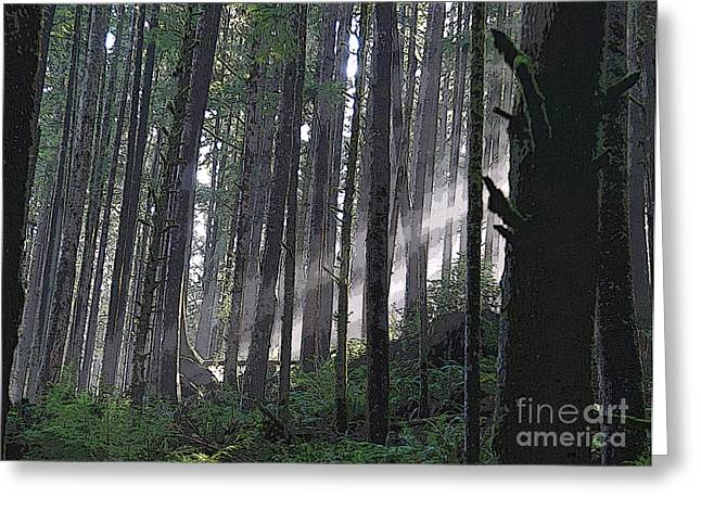 Dappled Light Greeting Cards - Light in the Forest Greeting Card by Jeanette French