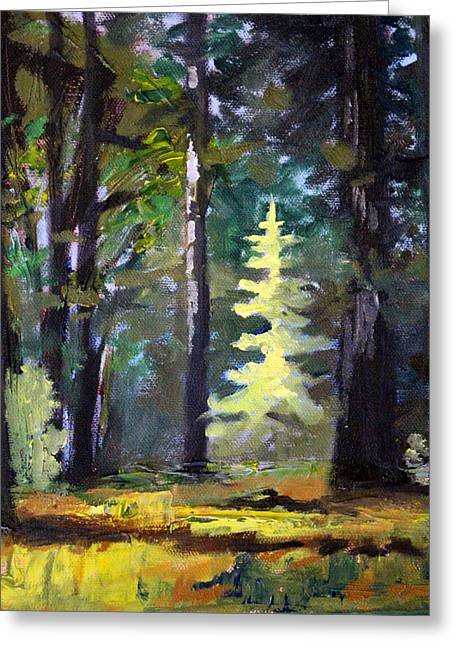 Sunriver Greeting Cards - Light in the Forest Greeting Card by Nancy Merkle