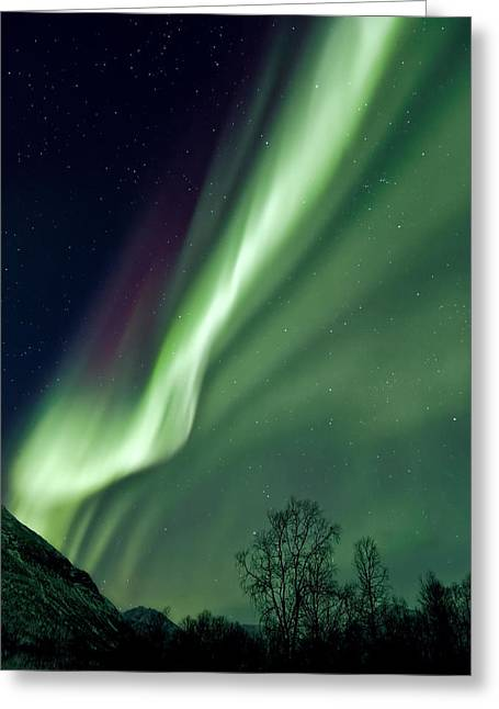 Astro Greeting Cards - Light in the Sky Greeting Card by Dave Bowman