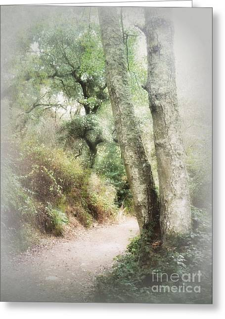 Enlightened Path Greeting Cards - Light Leads the Way Greeting Card by Diana Besser