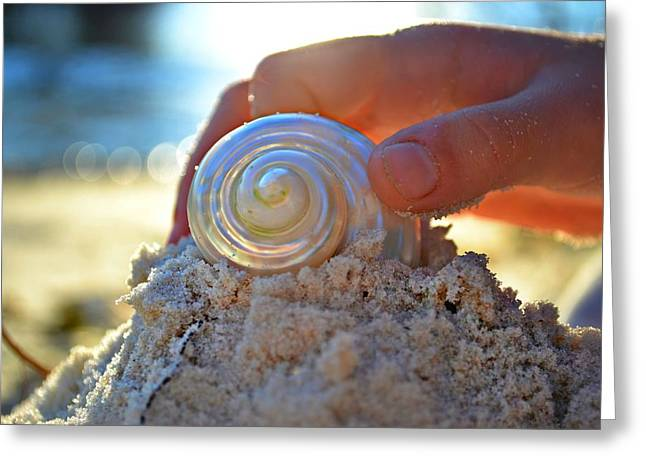 Sparkling Beach Greeting Cards - Light Of Creation Greeting Card by Laura  Fasulo