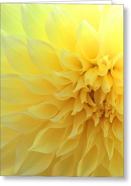 Angelical Greeting Cards - Light of Faith Greeting Card by  The Art Of Marilyn Ridoutt-Greene