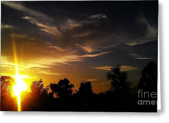 Landscape Greeting Cards - Light of Life Greeting Card by Chris Tarpening