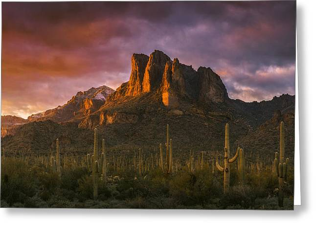 New Year Greeting Cards - Light of the New Year Greeting Card by Peter Coskun