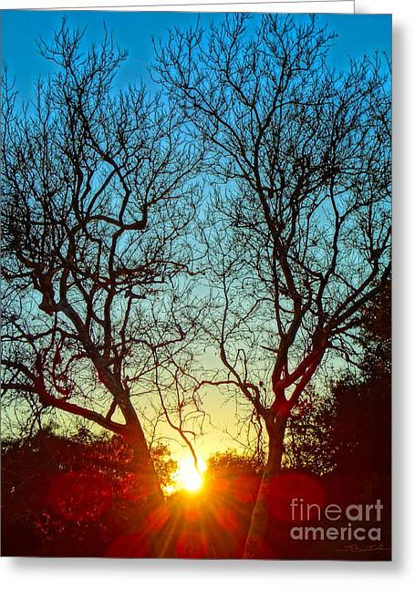 Empower Greeting Cards - Light Sanctuary Greeting Card by Gem S Visionary