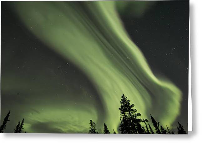 light swirls over the midnight dome Greeting Card by Priska Wettstein