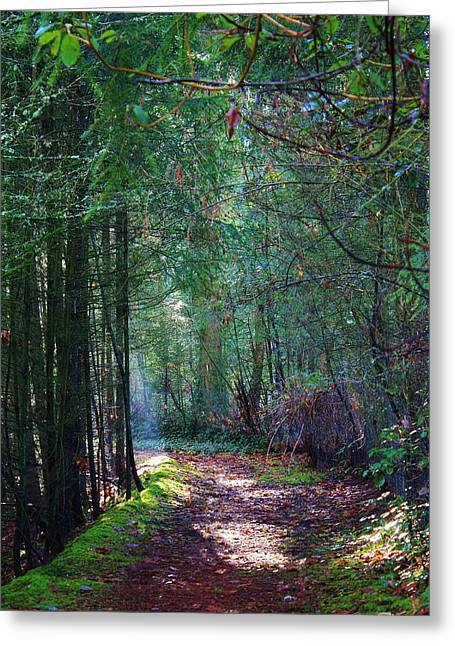Light The Way Greeting Card by Bruce Bley