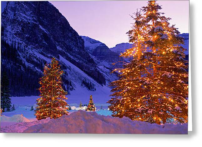 Snow Covered Mountain Greeting Cards - Lighted Christmas Trees, Chateau Lake Greeting Card by Panoramic Images