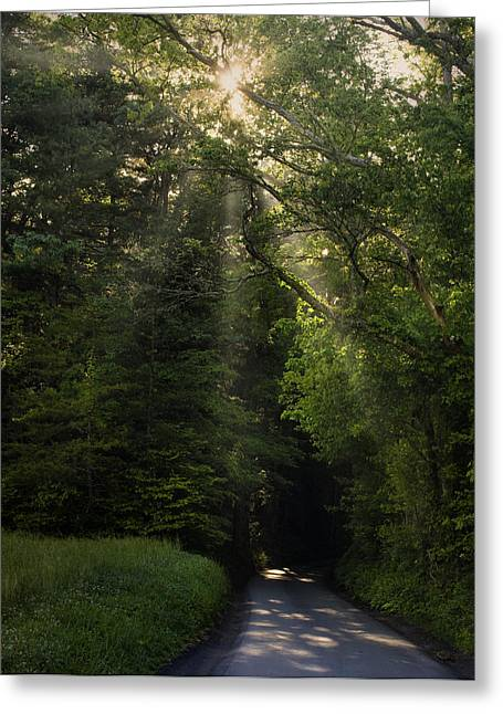 Smoky Greeting Cards - Lighted Path Greeting Card by Andrew Soundarajan
