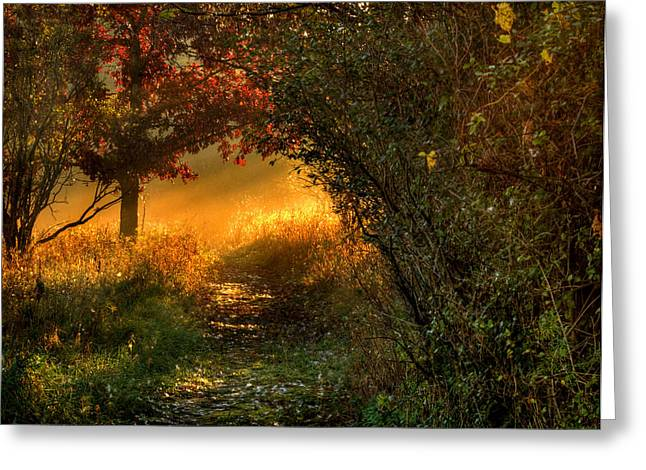 Spirtual Greeting Cards - Lighted Path Greeting Card by Thomas Young