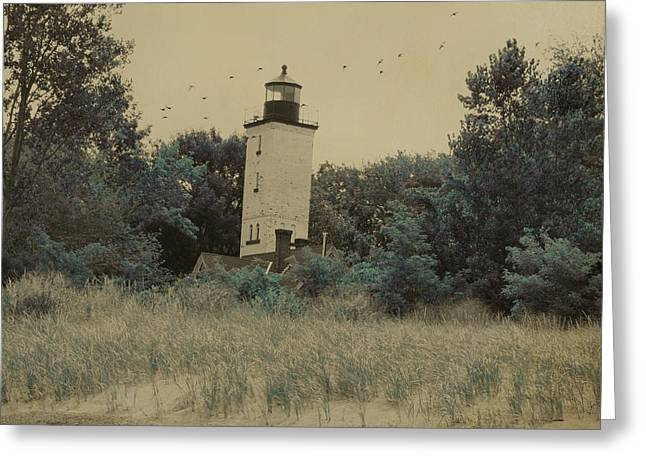 Nautical Birds Greeting Cards - Lighthouse Among The Trees Greeting Card by Gothicolors Donna Snyder