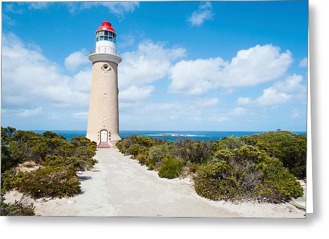 Kangaroo Island Greeting Cards - Lighthouse At Coast, Cape Du Couedic Greeting Card by Panoramic Images