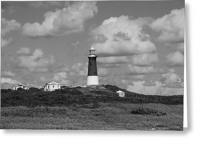 Most Pyrography Greeting Cards - Lighthouse at Hole in the wall Greeting Card by Shirley Cartwright