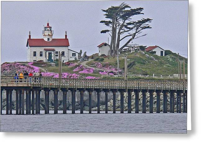 Lighthouse Beauty Greeting Card by Gracia  Molloy