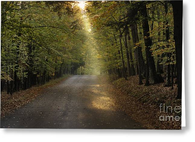 Peninsula State Park Greeting Cards - Lighting The Way Greeting Card by Sandra Bronstein