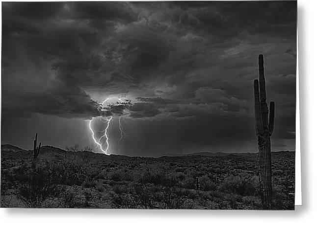 Arizona Lightning Greeting Cards - Lightning in Black and White  Greeting Card by Saija  Lehtonen