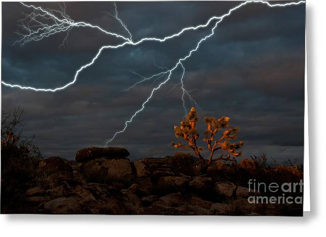 Harsh Conditions Photographs Greeting Cards - Lightning, Joshua Tree Highway Greeting Card by Mark Newman