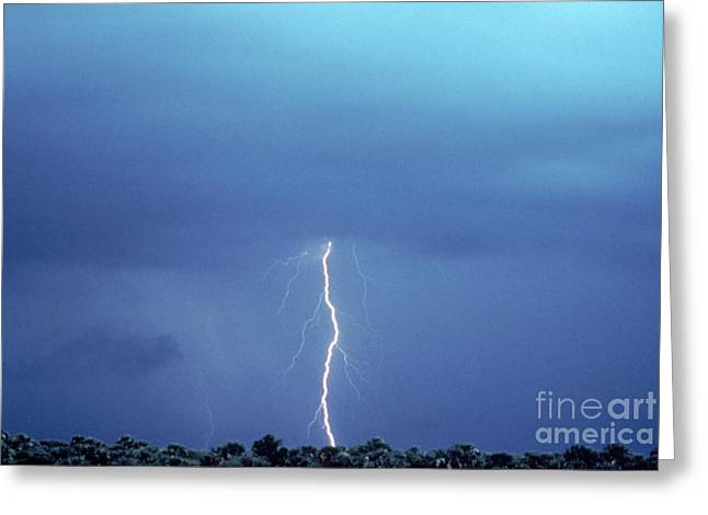 Cloud To Ground Greeting Cards - Lightning Greeting Card by Novastock