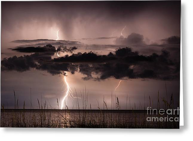 Beach At Night Greeting Cards - Lightning over the Ocean Amelia Island Florida Greeting Card by Dawna  Moore Photography