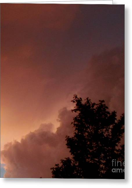 Storm Lovers Art Greeting Cards - Lightning Storm 2 Greeting Card by Gail Matthews