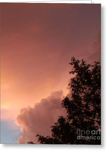 Storm Lovers Art Greeting Cards - Lightning Storm  Greeting Card by Gail Matthews